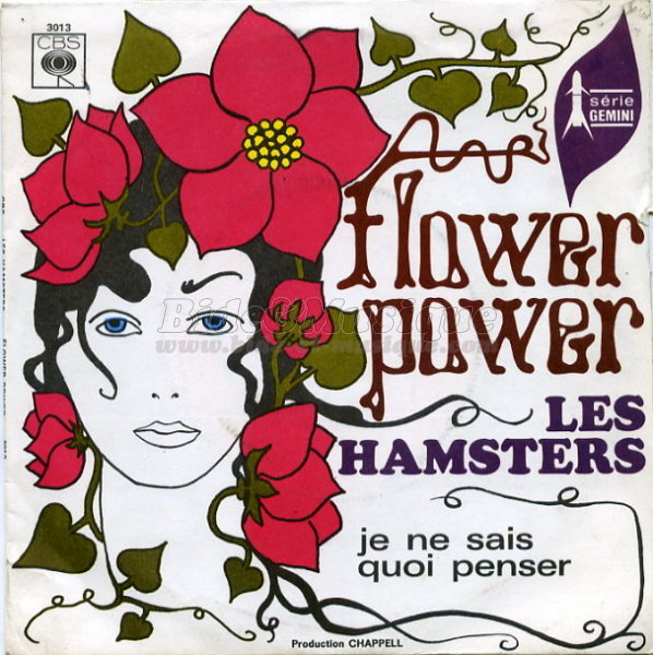 Les Hamsters - Flower power